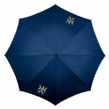 Ards FC Supporters Umbrella - Navy